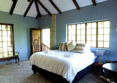 Beyond The Boma Lion Room